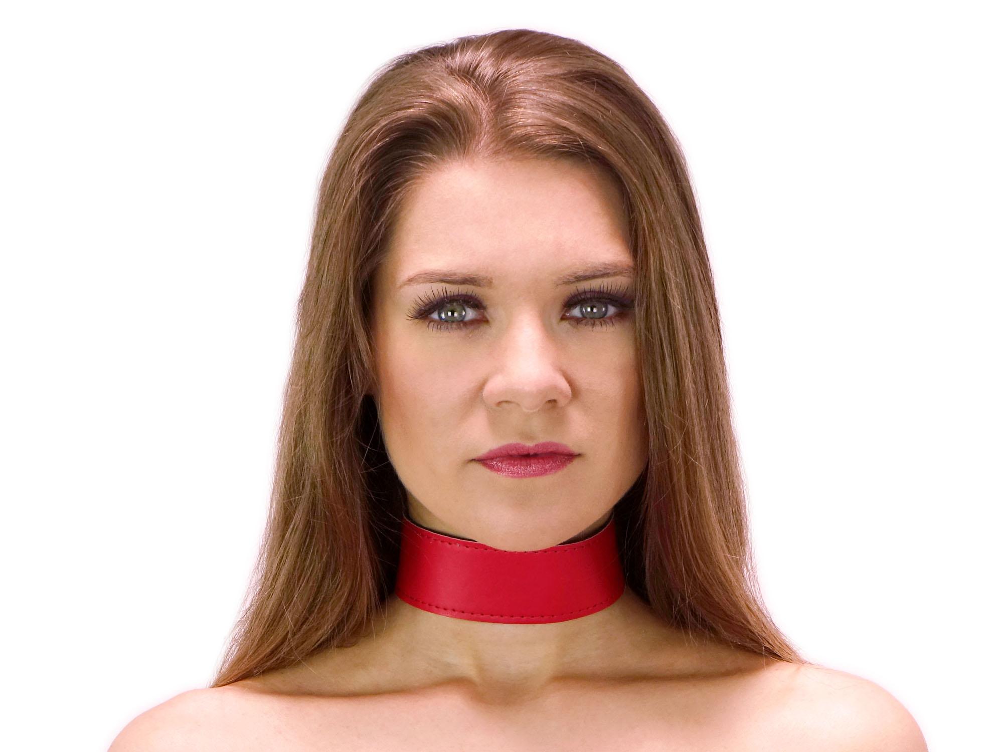 40 mm breites Halsband clean Rot